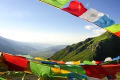 Prayer flags on Dargye La pass, Tibet 2012 (reurinkjan) Tags: buddhist buddhism amdo 2012 qinghai tibetanculture         janreurink tibetanplateaubtogang tibet natureofphenomenachoskyidbyings landscapesceneryrichuyulljongsrichuynjong naturerangbyungrangjung landscapepictureyulljongsrimoynjongrimo landscapeyulljongsynjong earthandwaternaturalenvironmentsachu prayerflaglungta manyprayerflagstogetherdarpung prayerflaginthewinddarchoklungky prayerflagdarchok mountaintopritualwithprayerflagsrisanglungta tibetanlandscapepicture amdogyarongfareasttibet  dowicounty drakkarjagmountainrange mtdrakkarjag fourwindhorsedeitiesfouranimalskhyungbirddragontigerandlionrlungrtalhabzhilungtalabzhi tibetantaggingproject    dargyelapass3540m