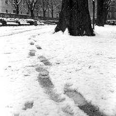 . (El H1N5) Tags: snow 120 film grenoble kodak 400tx 88 kiev arsat r09