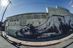 Rat Trap (EMIV) Tags: art los angeles district downton