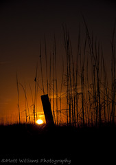 Fading light (Matt Williams Gallery) Tags: sun beach nature silhouette matt landscape photography nikon williams d90