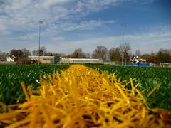 50-yard Line (army.arch) Tags: ny newyork field football ontheground turf kingspoint 50yardline merchantmarineacademy