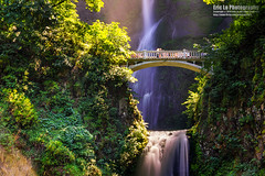 multnomah falls (Eric 5D Mark III) Tags: ef2470mmf28liiusm canon sony a7r2 ericlo photography landscape waterfall landmark bridge water tree ef2470l2 ilce7rm2 metabones eftonex smartadapter multnomahfalls oregon unitedstates usa