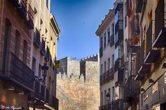 012894 - vila (M.Peinado) Tags: hdr muralla murallas vila provinciadevila castillaylen espaa spain 20092016 juniode2016 2016 canoneos60d canon ccby