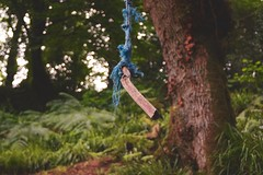 Rope Swing by Carrig River (reflectionghost) Tags: rope swing canon canon20d 50mm18 niftyfifty 50mm trees woods forest stream play green wexford river ireland