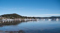 DSC_2790.jpg (Merrillie) Tags: saratoga nature australia person nswcentralcoast newsouthwales sea nsw brisbanewater centralcoastnsw boats wharf waterscape bay centralcoast ducks davistown