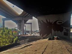 so paulo graffiti (Monroe_CLSTags) Tags: monroe graffiti ab coc kok ab16 monroewildstyle monroeclstags monroegraffiti monroesp monroesopaulo monroebrasil graffitimonroe graffitisp sp so paulo ipiranga galpp ponte fura fila marker street art graffitiold abcrew abc zona leste cracolandia