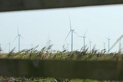 Kent (Katienom) Tags: wind turbine kent green