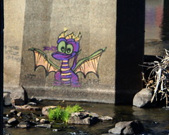 Spyro the Dragon (dsgetch) Tags: graffiti street art bridge willamette river autzen footbridge eugene sprinfield eugenespringfield eugeneoregon