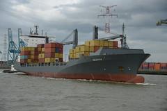Valdivia DST_7852 (larry_antwerp) Tags: port        belgium belgi          schip ship vessel        schelde        msc mediterraneanshipping valdivia 9333395