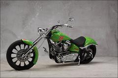 bikes-2009world-079-c-l