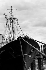 Arctic Corsair, Hull #museumboat #hull #riverhull #trawler #deepseafishing #monochrome #iphoneography (Nikki Goldblatt) Tags: museumboat hull riverhull trawler deepseafishing monochrome iphoneography