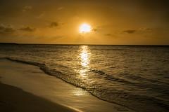 Sunset In Aruba (Zurab Kakichashvili) Tags: beautiful beach caribbean ocean sunset sunrise nature naturelovers natureofourworld natureseekers natureshooters tropic water