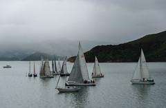 Gliding By (Jocey K) Tags: newzealand akaora scene cloudy hills sea water akaroaharbour sailing boats yachts bankspeninsula