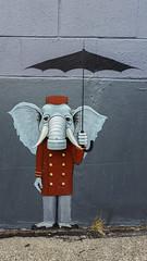 Ballard. ([Gaston].) Tags: seattle washington streetart graffiti elephant umbrella ballard