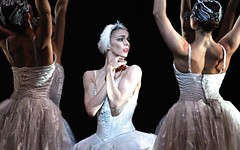 Swan Lake to be live screened in cinemas across the world on 17 March 2015