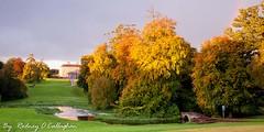 Doneraile Park (Rodney o Callaghan) Tags: sunrise autumncolours donerailepark donerailecourt