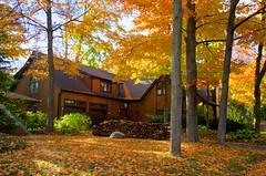 Autumn (Jim Wallace) Tags: autumn house ontario canada fall leaf colours god waterloo beams pentaxda21limited