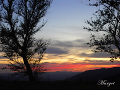 Sunset (Margcoss) Tags: sardegna sunset sky italy tree clouds italia tramonto nuvole sardinia cielo albero gallura sonysti rememberthatmomentlevel1 rememberthatmomentlevel2 rememberthatmomentlevel3 margcoss