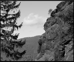 Bayerischer Wald 2012 (delightful*_*) Tags: blackandwhite bw germany bayern deutschland natur landschaft silberberg bayerischerwald schwarzweis