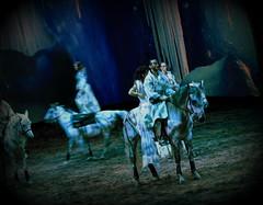 Cavalia (juliet_earth) Tags: show horses horse animals caballo caballos animales entretenimiento cavalia horselover entretainment