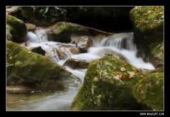 Capricieuse ! (Manogre) Tags: grenoble landscape focus paysage cascade isre 600d grenowalk manogre