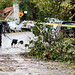 Hurricane Sandy: An Uptown Perspective