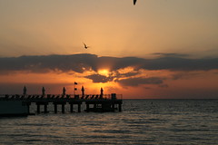 Key west sunset (**johnwillis**) Tags: florida keywest floridakeys thefloridakeys keywestsunset