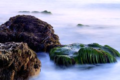The grass is greener (RV Sun) Tags: california longexposure usa moss rocks ngc malibu pacificocean greengrass seaweeds corrals calmseas flickraward nikonflickraward rvsun hurricanesandy