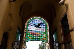 Black eagle (access.denied) Tags: architecture secession artnouveau romania jugendstil oradea nagyvarad nagyvrad vulturulnegru summer2012
