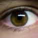 Eye of wisdom. [15/365]