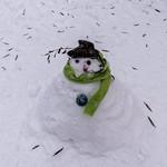 Il neige sur Paris - 20 janvier 2013 thumbnail