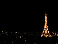 Eiffel Tower (Mairead D) Tags: travel winter paris france french photography frankreich europe bokeh eiffeltower eiffel toureiffel letoureiffel