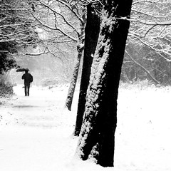 snow: a long walk home (gregjack!) Tags: uk trees blackandwhite bw snow man motion tree london umbrella dof streatham streathamcommon