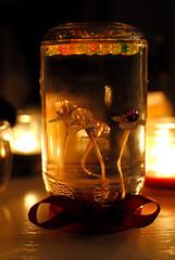 Flower Globe DIY (xTheMedusaCascadex) Tags: flowers light flower water night 35mm fire diy globe lowlight nikon candles candle low flame bow ribbon nikkor afs d3000 f18g