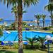 Sirens hotels in Malia - the pool