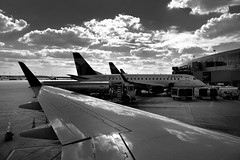 Delta Airplanes at the Gates of Austin Airport (Black & White) (thor_mark ) Tags: travel tarmac austin airplane blackwhite unitedstates tx airplanes delta day1 planes aus miscellaneous planewindow airplanewindow lookingwest planewing airplanewing abia project365 austinairport austinbergstromairport jetairplanes colorefexpro airplanewindowview ausairport lookingouttheairplanewindow blueskieswithclouds lookingoutsideplanewindow nikond800e abiaairport airplanesontarmac capturenx2edited triptomountrainierandcolumbiarivergorge