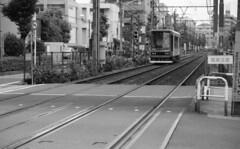 160625_PentaxMe_001 (Matsui Hiroyuki) Tags: pentaxme jupiter985mmf20 fujifilmneopan100acros epsongtx8203200dpi
