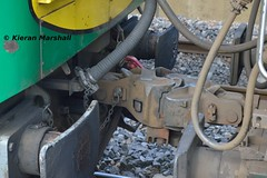 222 coupling, Portlaoise, 5/9/16 (hurricanemk1c) Tags: railways railway train trains irish rail irishrail iarnród éireann iarnródéireann portlaoise 2016 generalmotors gm emd 201 222 1100heustoncork