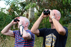 Spotting a Woodpecker (Bob Hawley) Tags: nikond7100 summerholidays england suffolk theberton nikon50mmf14 holidaycottages people men birdwatching binoculars
