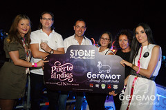 David Guetta - Stone and Music Festival