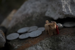 0217 (Shota Fukuda) Tags: japan    temple