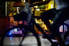 (Masakazu Ikeguchi) Tags: cat straycat night japan tokyo nikond5