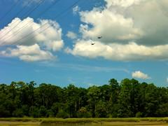 Odd Birds (TrackHead Studios) Tags: trackheadxxx trackhead trackheadstudios adamhall helicopter clouds sky military birds