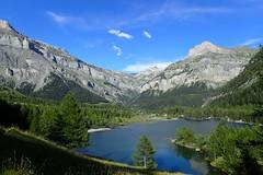 Lac de Derborence (8pl) Tags: lac derborence valais forts arbres nature suisse randonne