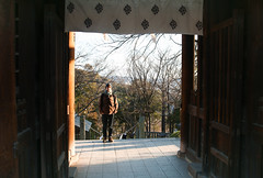 1 (lilacandhoney) Tags: asian asie asia temple shrine printemps hiver portrait japan japon japanese beauty scenery poetry world journey canon eos 70d moment memory colors colours city moments people spring day daytime life light landscape garden park voyage france french boy guy man harmony