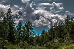 Nature Picturale (Frdric Fossard) Tags: paysage montagne nature glacier fort sapin arbre ciel nuage lumire pictural peinture massifdumontblanc massifdesaiguillesrouges alpes hautesavoie cimes valle chamonix altitude