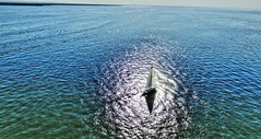 Oneida Lake (John M Anderson) Tags: sylvan verona beach oneida lake new york ny water boat park amusement