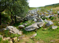 O Mio 4. Pedregal de Irimia ( Lugo ). (Esetoscano) Tags: paisaje landscape piedras stones nacimientodelmio sourceofmioriver pedregaldeirimia serrademeira meira lugo galiza galicia espaa spain