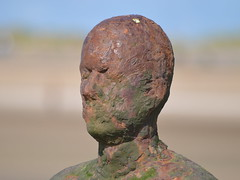 """""""Another Place"""" Detail, Crosby Beach (pda87) Tags: nikon d3200 crosby beach marina art sculpture anotherplace another place"""