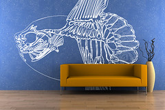 Sunfish skeleton in interior design (cabeza_alegre) Tags: nobody wall sofa orange interior vase blue dry comfortable home furniture room indoors modern elegance seat leather design luxury floor horizontal color style empty living single front parquet brown wood apartment background